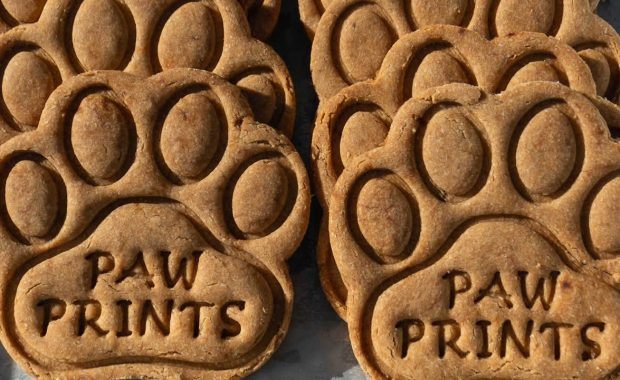 Kate Bunting owner of Paw Prints Dog Treats